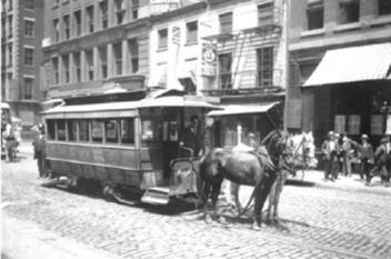 streetcar horses