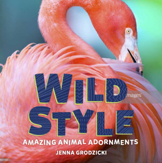 Wild Style cover